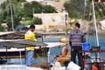 Souvala | Aegina | Greece  Photo 9 - Photo JustGreece.com