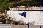 Aponissos | Angistri (Agkistri) - Saronic Gulf Islands - Greece | Photo 5 - Photo JustGreece.com