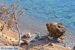 Klein Sandy beach between the dennebomen near Skala | Angistri (Agkistri) - Saronic Gulf Islands - Greece | Photo 5 - Photo JustGreece.com