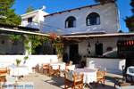 Terras Agistri Club | Angistri (Agkistri) - Saronic Gulf Islands - Greece | Photo 1 - Photo JustGreece.com