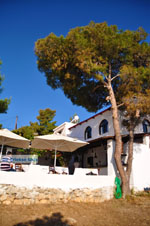 Terras Agistri Club | Angistri (Agkistri) - Saronic Gulf Islands - Greece | Photo 2 - Photo JustGreece.com