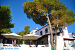 Terras Agistri Club | Angistri (Agkistri) - Saronic Gulf Islands - Greece | Photo 3 - Photo JustGreece.com
