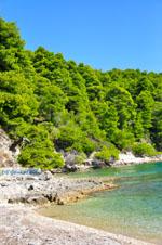 Milia Alonissos | Sporades | Greece  Photo 2 - Photo JustGreece.com