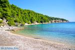 Milia Alonissos | Sporades | Greece  Photo 3 - Photo JustGreece.com