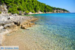 Milia Alonissos | Sporades | Greece  Photo 5 - Photo JustGreece.com