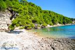Milia Alonissos | Sporades | Greece  Photo 7 - Photo JustGreece.com