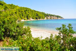 Milia Alonissos | Sporades | Greece  Photo 16 - Photo JustGreece.com