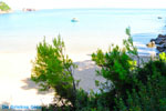JustGreece.com Chrisi Milia | Alonissos Sporades | Greece  Photo 10 - Foto van JustGreece.com