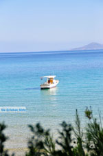JustGreece.com Chrisi Milia | Alonissos Sporades | Greece  Photo 14 - Foto van JustGreece.com