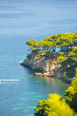 Eastern coast Alonissos | Sporades | Greece  Photo 7 - Photo JustGreece.com
