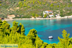 Tzortzi | Alonissos Sporades | Greece  Photo 2 - Foto van JustGreece.com