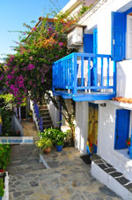 JustGreece.com Alonissos town (Chora) | Sporades | Greece  Photo 6 - Foto van JustGreece.com