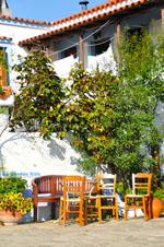 JustGreece.com Alonissos town (Chora) | Sporades | Greece  Photo 51 - Foto van JustGreece.com