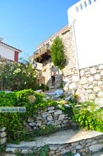 Alonissos town (Chora) | Sporades | Greece  Photo 55 - Photo JustGreece.com