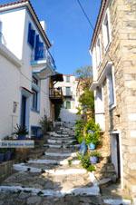Alonissos town (Chora) | Sporades | Greece  Photo 60 - Photo JustGreece.com