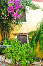 Alonissos town (Chora) | Sporades | Greece  Photo 86 - Photo JustGreece.com