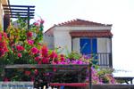 Alonissos town (Chora) | Sporades | Greece  Photo 89 - Photo JustGreece.com
