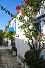 Alonissos town (Chora) | Sporades | Greece  Photo 96 - Photo JustGreece.com