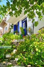 JustGreece.com Alonissos town (Chora) | Sporades | Greece  Photo 98 - Foto van JustGreece.com