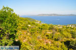 JustGreece.com Steni Vala | Alonissos Sporades | Greece  Photo 3 - Foto van JustGreece.com
