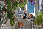 JustGreece.com Amorgos town (Chora) - Island of Amorgos - Cyclades Photo 214 - Foto van JustGreece.com