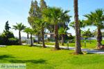 Hotel Golden Coast Nea Makri | Attica - Central Greece | Greece  Photo 2 - Photo JustGreece.com