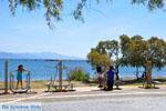 Nea Makri near Athens | Attica - Central Greece | Greece  Photo 15 - Photo JustGreece.com