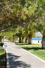 Nea Makri near Athens | Attica - Central Greece | Greece  Photo 33 - Photo JustGreece.com