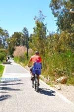 Nea Makri near Athens | Attica - Central Greece | Greece  Photo 36 - Photo JustGreece.com