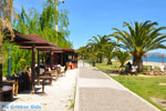 Nea Makri near Athens | Attica - Central Greece | Greece  Photo 37 - Photo JustGreece.com