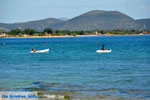 Nea Makri near Athens | Attica - Central Greece | Greece  Photo 42 - Photo JustGreece.com