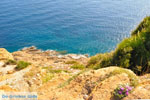 Sounio | Cape Sounion near Athens | Attica - Central Greece Photo 53 - Photo JustGreece.com