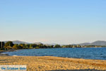 beach Nea Makri | Attica - Central Greece | Greece  Photo 1 - Photo JustGreece.com
