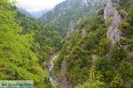 Enipeas gorge near Litochoro and Olympus | Pieria Macedonia | Greece Photo 4 - Photo JustGreece.com