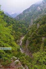 Enipeas gorge near Litochoro and Olympus | Pieria Macedonia | Greece Photo 6 - Photo JustGreece.com