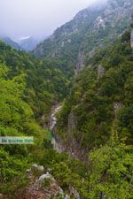 Enipeas gorge near Litochoro and Olympus | Pieria Macedonia | Greece Photo 8 - Photo JustGreece.com