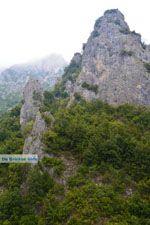 Enipeas gorge near Litochoro and Olympus | Pieria Macedonia | Greece Photo 9 - Photo JustGreece.com