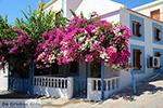 Nimborio Halki - Island of Halki Dodecanese - Photo 128 - Photo JustGreece.com