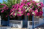 Nimborio Halki - Island of Halki Dodecanese - Photo 129 - Photo JustGreece.com