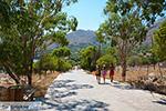 Nimborio Halki - Island of Halki Dodecanese - Photo 236 - Photo JustGreece.com