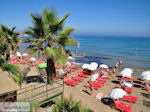 Starbeach Hersonissos - Heraklion Prefecture - Crete photo 77 - Photo JustGreece.com