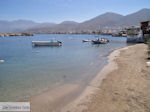 Hersonissos - Heraklion Prefecture - Crete photo 201 - Photo JustGreece.com