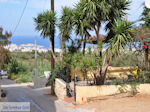 Koutouloufari Crete (Crete) Photo 22 - Photo JustGreece.com