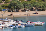 JustGreece.com Alopronia, The harbour of Sikinos | Greece | Greece  - Photo 28 - Foto van JustGreece.com