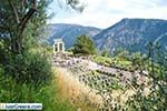 Delphi (Delfi) | Fokida | Central Greece  Photo 18 - Photo JustGreece.com