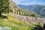Delphi (Delfi) | Fokida | Central Greece  Photo 94 - Photo JustGreece.com