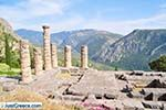 Delphi (Delfi) | Fokida | Central Greece  Photo 97 - Photo JustGreece.com