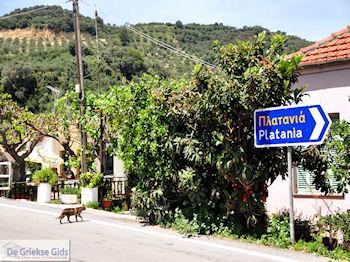 Leuk small village Patelari near Platanias and Stalos (Platanias Chania Crete - Stalos Chania Crete) Photo 4  | Chania | Crete - Photo JustGreece.com