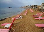 Malia Crete | Greece | Greece  Photo 44 - Photo JustGreece.com