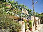JustGreece.com Taverna Matigis in Stalos  | Chania | Crete - Foto van JustGreece.com
